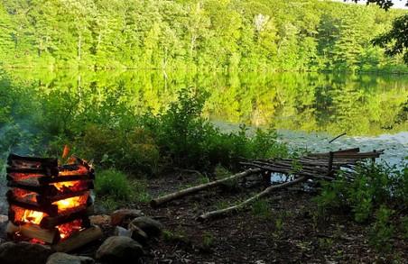 Як вберегти ліси Львівщини: поради