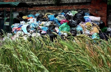 Садовий дуже лукавить щодо грошей на сміття, - Назарій Романчук