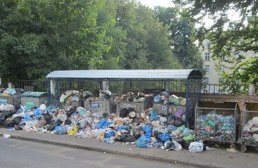 У Львові звільнили ще 37 майданчиків від сміття Садового