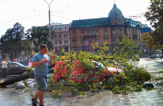 Літня гроза у центрі Львова ледь не вбила людей (ФОТО)