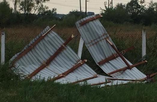 На Львівщині гроза зриває дахи та валить дерева (ФОТО)