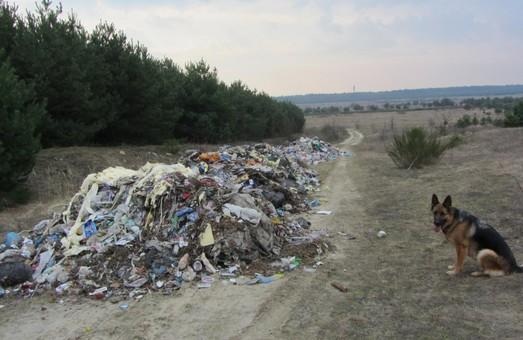 За рік на Львівщині вдвічі зменшилася кількість стихійних сміттєзвалищ