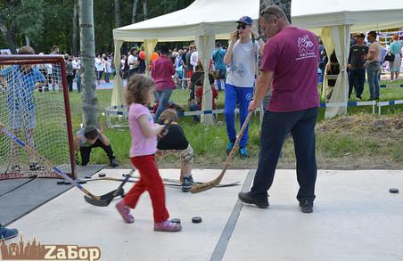 Козацькі розваги, майстер-класи для дітей, аквагрим: на Жидачівщині відбудеться родинний фестиваль