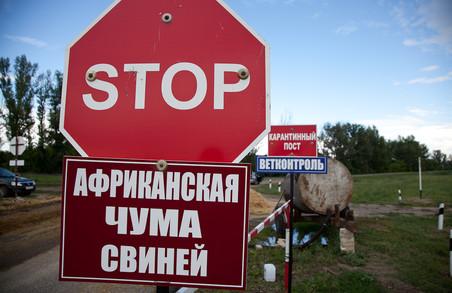 АЧС на Львівщині: селяни не дають приспати свиней
