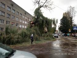 На Львівщині бушувала стихія - знеструмлено 292 населених пункти (Фото)
