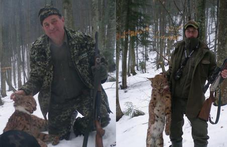 Батько і син, що вбили рідкісну рись, виявились лісником та місцевим депутатом