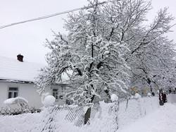 Як виглядає зимова казка в українській глибинці (ФОТО)