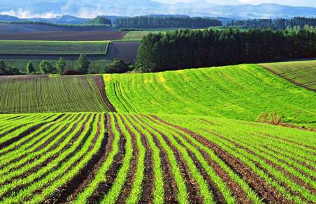 Серед іноземців найбільше землі в Польщі купили українці
