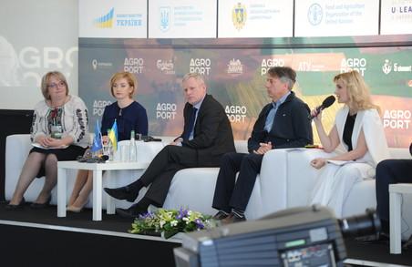 Agroport має розширюватися у напрямку Nord! - заступник міністра АПК