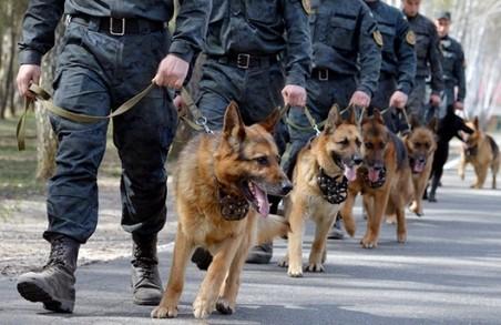 На Львівщині підготували перших службових собак для спецназу