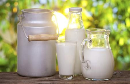 На Львівщині скоротилося виробництво молока