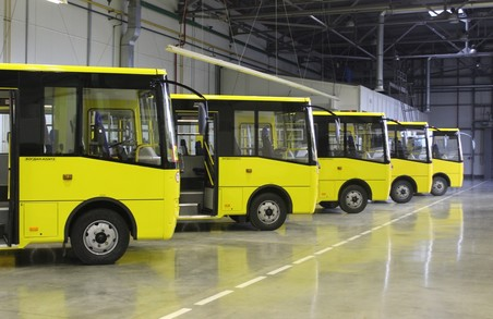 Хто на Львівщині зможе безкоштовно їздити у маршрутках