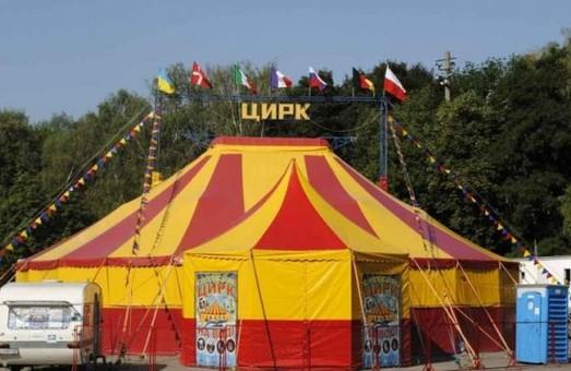 У Дрогобичі заборонили пересувні цирки з тваринами