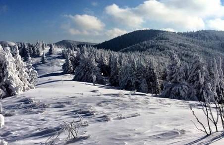 У горах Львівщини загинув турист