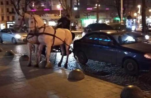 У Львові п'яний кучер на кареті вчинив ДТП і втік з місця пригоди