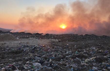 Пожежу на нелегальному сміттєзвалищі в Новому Роздолі погасили