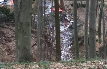 У Львові з'явилося ще одне нелегальне сміттєзвалище