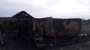 На Львівщині чорні лісоруби навмисно спалюють майно селян