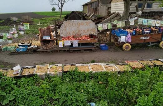 На Львівщині відкрили базар з самообслуговуванням