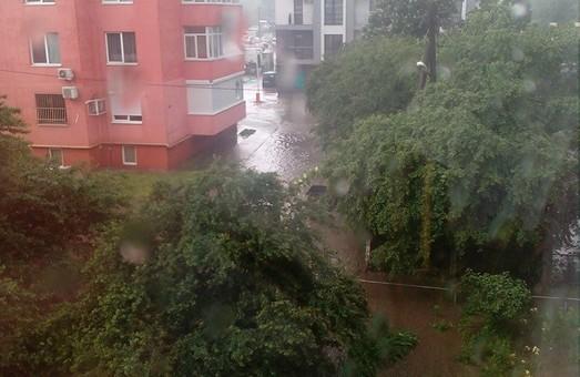 У Львові пропонують план для порятунку вулиці Торф'яної від потопів
