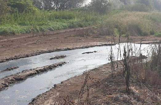 Біля Львова ферма своєю діяльністю утворила озеро з гною