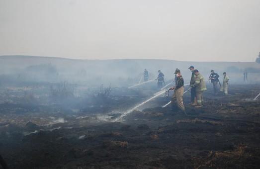 Рятувальникам Львівщини повідомили про пожежу торфовища через 9 днів після її початку