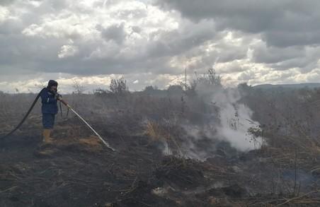 На Львівщині два тижні палають торфовища