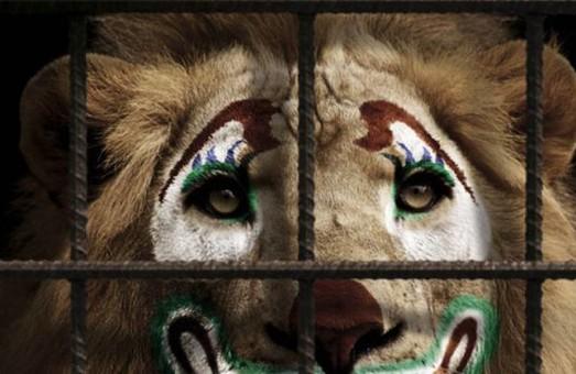 У Львові заборонили використовувати тварин у цирку
