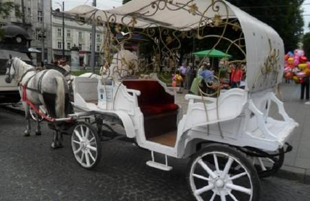 У Львові каретам на тиждень  заборонили в`їзд у центр міста