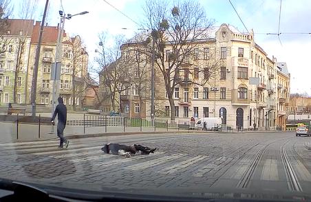 У Львові чоловік вдарив жінку на переході