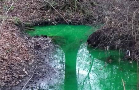 Біля Львова річка позеленіла від відходів