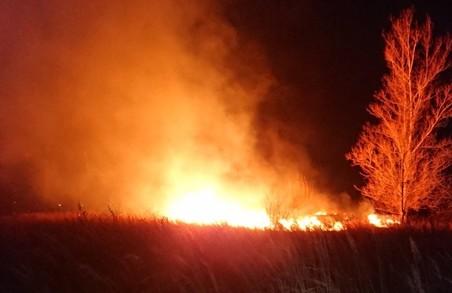 Біля Львова ледь загасили 2 масштабні пожежі