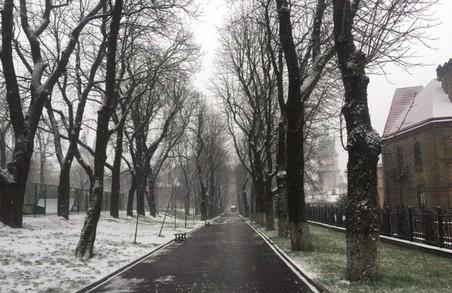 Львів зекономив 5 500 000 гривень на погоді