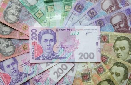 Син мера Новояворівська заробив мільйон за місяць на держзамовленнях