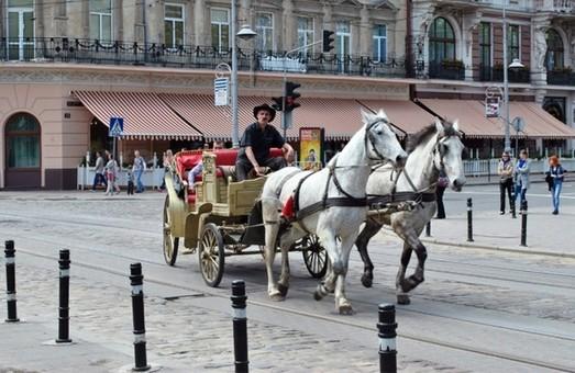 З центра Львова можуть зникнути кінні карети