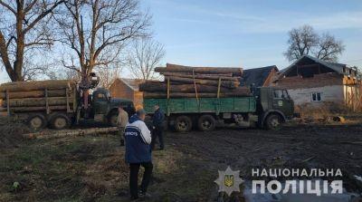 На Львівщині виявили незаконну пилораму