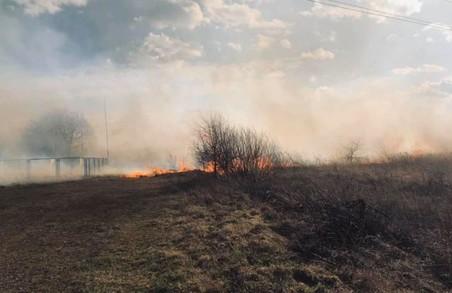 Фермери з Львівщини масово спалили сухостій та спричинили пожежу