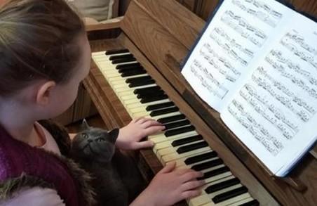 Під час карантину учні мистецьких шкіл Львівщини навчаються онлайн та заохочують до музичних челенджів