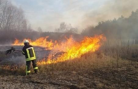 На вихідних в Львівській області склали 27 протоколів на паліїв сухостою
