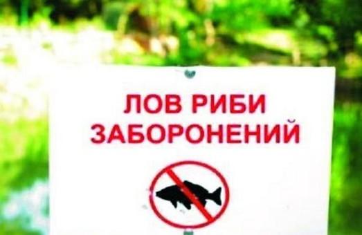 На Турківщині заборонили вилов риби на період нересту
