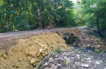 На Буковині відновлюють лісові дороги