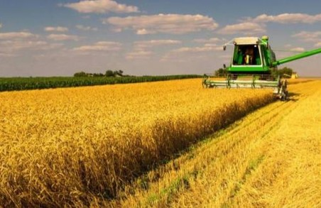 На Львівщині уже зібрали урожай на понад 115 тисячах гектарів