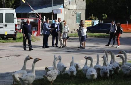 Львівського мера Садового під час візиту на вулицю Миколайчука переслідувала зграя гусей