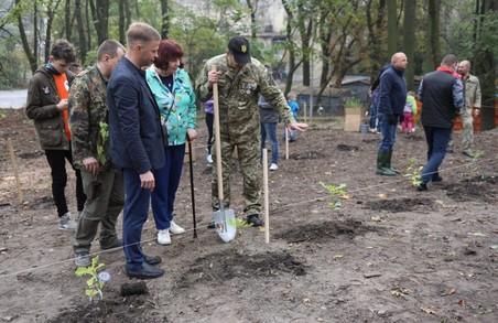 У Львові в парку на Високому Замку висадили понад 400 дерев
