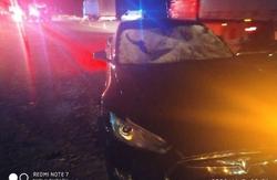 На Львівщині під колеса «Tesla S» потрапили два молоді пішоходи