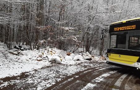 У Львові невідомі викинули сміття в районі кінцевої тролейбуса № 31