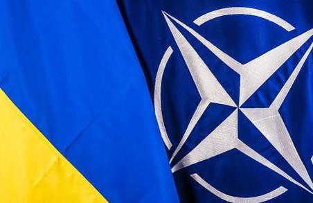 Україна уже наступного року може отримати План щодо членства у НАТО