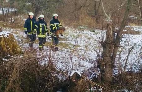 У Самборі на Львівщині рятувальники витягли песика із річки
