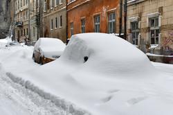 Вхурделило: як Львів замітає снігом (ФОТО)