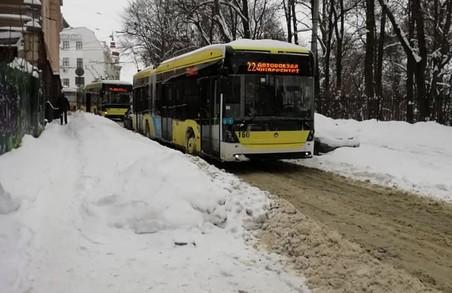 У Львові на спуску до Університету зупинилися тролейбуси